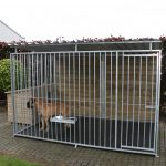 kennel Apollo